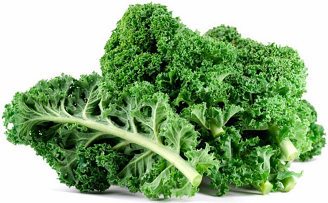 A photo of green, leafy kale leaves on a white background