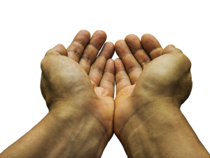 two hands held outwards together cupped in a form of request