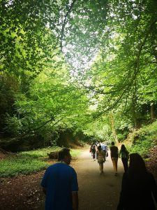 People walking along a footpath surrounded by trees